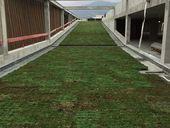 Terrasses bio dans les Alpes-Maritimes, Des Racines et des Murs